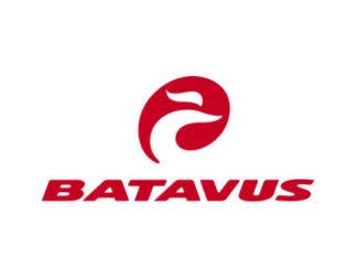 Batavus E-bike