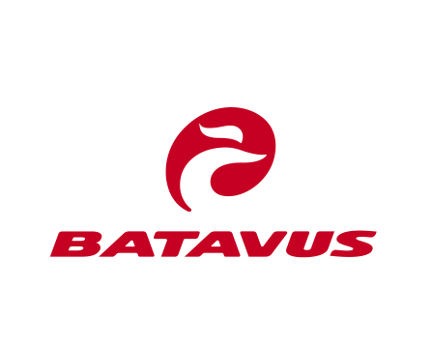 Batavus stadsfietsen