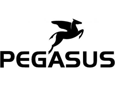 Pegasus Bosch E-bike